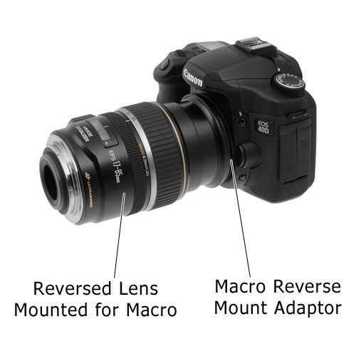 Reverse Ring For Canon  Mm
